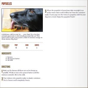 Pupsicle Recipe